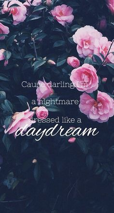 darling i'm a nightmare dressed in a daydream