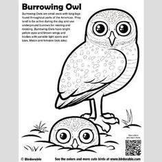 Cute Bird Coloring Pages (page 2) by Birdorable - Free Downloads Bird Coloring Pages, Cartoon Coloring Pages, Free Printable Coloring Pages, Coloring Books, Colouring, Owl Facts, Bird Facts, Animal Facts, Family History Book