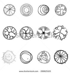 stock-vector-a-set-of-graphic-tree-icons-for-architectural-or-landscape-design-289825103.jpg (450×470)