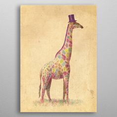 DENY Designs 'Fashionable Giraffe' by Terry Fan Graphic Art on Wrapped Canvas Size: Wood Wall Art, Framed Wall Art, Framed Art Prints, Canvas Wall Art, Canvas Prints, Wall Decal, Terry Fan, Giraffe Art, Giraffe Nursery