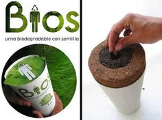 Instead of being buried, be a tree.  The Bios Urn  allows people to use their ashes to germinate a seed of their choice.