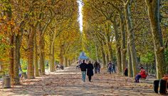Why visit Paris in fall? It means crisp days, beautiful autumn colors and more affordable travel expenses. Sounds like a great time to visit, right? Tour Eiffel, Monuments, Great Places, Places To Go, Paris Garden, Jardin Des Tuileries, Glass Building, Luxembourg Gardens, I Love Paris