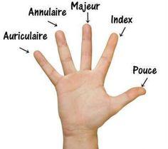 Les doigts de la main Más