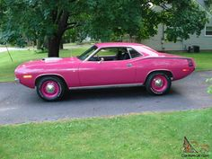 1970 cuda in pink panther - Bing Images,  one of four of my favorite colors for mopars. Plum Crazy Purple, Moulin  Rouge, Pink Panther and Sub lime Green.
