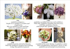 Unique Meaning Of Wedding Flowers - Having a great wedding arch is as critical as choosing the ideal wedding gown, since it is in the front of this arch. Flower Words, Flower Quotes, Wedding Reception Planning, Wedding Receptions, Wedding Ideas, Flower Bouquet Wedding, Bouquet Flowers, Bridal Bouquets, Flower Meanings