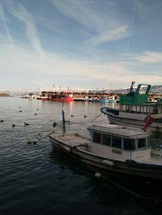Araklı Liman