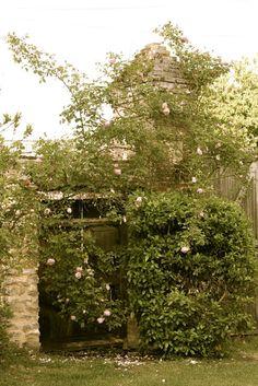 Secret Gate to the garden