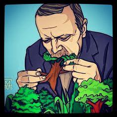 Occupy gezi/istanbul/taksim