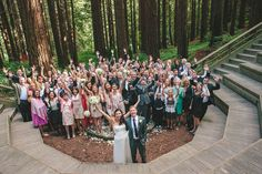How many guests can you fit into one wedding photo? All! if you're at the UC Botanical Garden's Redwood Grove.