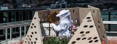 By Tasnim AbdiIn ByBi, an environmental group based in Oslo, Norway, designed the world's first urban bee highway—a route filled with green… Green Roof Benefits, Bee Friendly Flowers, Urban Heat Island, Wild Bees, Living Roofs, Rooftop Garden, Digital Trends, Science Projects, Bee Keeping