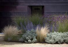 Dream Landscapes: 10 Perennial Gardens Inspired by Piet Oudolf (via Bloglovin.com )