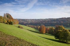 The rolling surrey hills from Polesden Lacey.   © Eddie Hyde