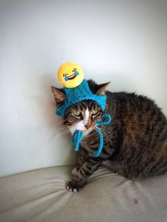 Cat Dog Costume Hat with Smiley Face Blue by DesignsbyPolina