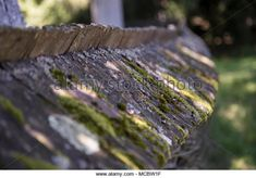 Traditional village wood fence .