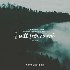 Even though I walk through the darkest valley, I will fear no evil, for you are with me. Psalm (NIV) Psalm 23 – Going Through Hell Series – Part 1 Go to PART 1 Biblical Quotes, Bible Verses Quotes, Religious Quotes, Bible Scriptures, Faith Quotes, Encouraging Verses, Favorite Bible Verses, God First, Christian Quotes