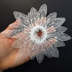 Paper Plants and Animals Cut By Hand with a Surgical Knife « Maude White