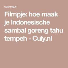Filmpje: hoe maak je Indonesische sambal goreng tahu tempeh - Culy.nl