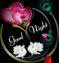 Good Night Love Messages, Beautiful Good Night Images, Cute Good Night, Good Night Moon, Good Night Quotes, Beautiful Pictures, Good Morning Wishes Gif, Good Morning Flowers Gif, Good Morning Happy Sunday