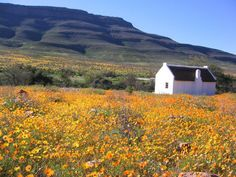 Enjo Nature Farm, Clanwilliam & Cederberg, Western Cape on Budget-Getaways Romantic Weekend Getaways, Romantic Vacations, Safari, National Road, Weekends Away, Great View, Beautiful Landscapes, West Coast, South Africa