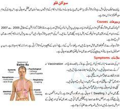 Swine Flu in Urdu''''