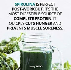 Spirulina - most digestible source of complete protein