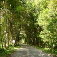 Foto de Buga- Valle del Cauca, Colombia