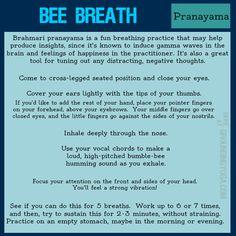 PRACTICA PRANAYAMA - Bee breath