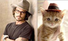 Johnny Depp (http://deshommesetdeschatons.tumblr.com/)