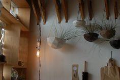 Prismatic hanging planters (General Store, Ocean Beach, SF)