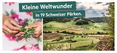 Wettbewerb 2020 DE Entlebucher, Parcs, Vineyard, Post, Outdoor, Switzerland, Into The Wild, Wonders Of The World, Communities Unit