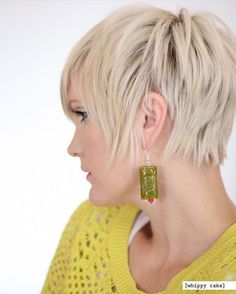 Chic Straight Pixie Hair Style