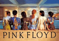 Pink Floyd Back Catalog Fabric Poster - Bring peace to the room with this graceful Pink Floyd Back Catalog Fabric Poster.