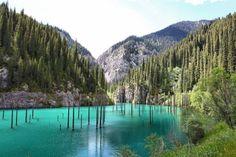 Esse lago Kaindy, no Cazaquistão, se fez depois de um terremoto em 1911, que causou um deslizamento de terra e deu uma represa natural