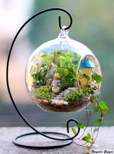 Gastrorganik - Minyatür Bahçeler #fairygardening