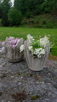 If you are looking for a planter that is budget-friendly and displays flowers in a unique way, then a cement cloth planter is the right choice for you. Garden Art, Garden Design, Plants, Cement Garden, Planter Project, Outdoor Gardens Design, Small Space Gardening, Garden Sculpture, Planters