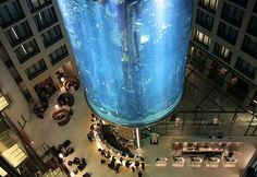 The Radisson Blu Hotel In Berlin, Germany may look like just another luxury hotel, however once you enter it, you will be blown away by the enormous 82-feet high aquarium in the heart of the hotel's lobby atrium.