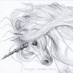 Gray Unicorn whispwan   Graphite drawing.