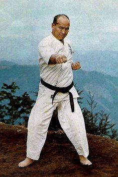 Shotokan Karate Kata, Judo Karate, Goju Ryu, Kyokushin Karate, Chinese Martial Arts, Black Belt, Art Pictures, Old School, Hero
