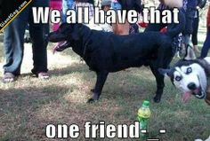 We All Have That One Friend | Click the link to view full image and description : )