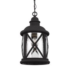 Sea Gull 6221401-12 - Lakeview One Light Outdoor Pendant in Black