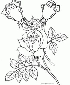 Coloring Pages of Flowers at : http://azcoloringpages.com