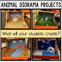 animal diorama projects