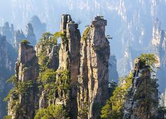 In the Hunan Province of China lies the awe-inspiring Zhangjiajie National Forest Park. Over 3000 giant quartz-sandstone pillars rise from pristine forest, with the tallest topping out at a staggering 1,080-metres!