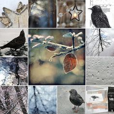 textile artist photography and mixed media - Carolyn Saxby Textile Art St Ives Cornwall Carolyn Saxby, Beast From The East, Pretty Beach, Water Reflections, Look At The Stars, Holly Leaf, Art Archive, How To Make Tea