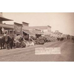 Line of Oxen in Sturgis, Dakota Territory. Ox teams at Sturgis, Dakota Territory. It was taken in 1887 by Grabill, John C. Old West, Old Pictures, Old Photos, Amazing Pictures, Rare Photos, Vintage Photographs, Vintage Photos, West Town, Into The West