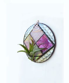Stained Glass Air Plant Holder  Round Checkered  by glassetc, $29.99