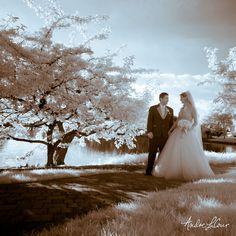 Happy newlyweds take