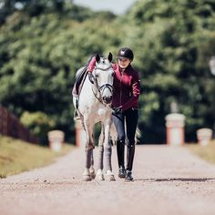 That special bond you have with your best friend   #equestrian #equestrianstockholm #horse #horses #equestrianperformance