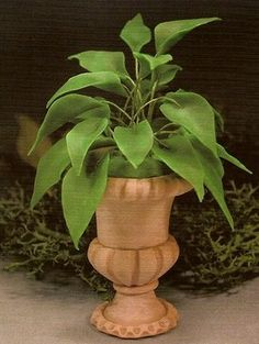 how to: potted plant