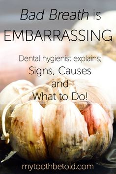 As a dental hygienist I have this conversation a lot more than the average person. Bad breath can be embarressing. I got over signs, causes and what to do about bad breath in this post. Average Person, Self Conscious, Dental Hygienist, Bad Breath, Oral Health, Get Over It, Breathe, Conversation, Tooth